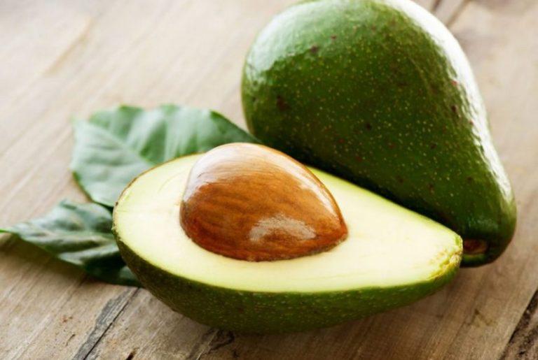 как выглядит авокадо выращенное из косточек