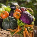 Все секреты природного земледелия для начинающих садоводов